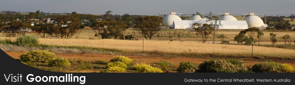 """The Dolly Twins"", Goomalling's iconic grain storage domes"