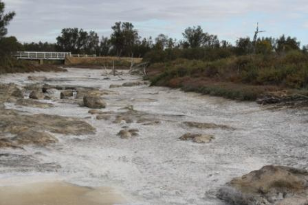 Mortlock River in the dry season in Goomalling, Western Australia