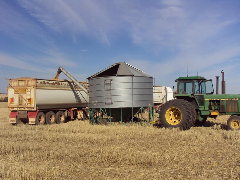 Harvest in Goomalling, Western Australia