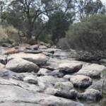 Mortlock River in the dry season in Goomalling, Western Australia
