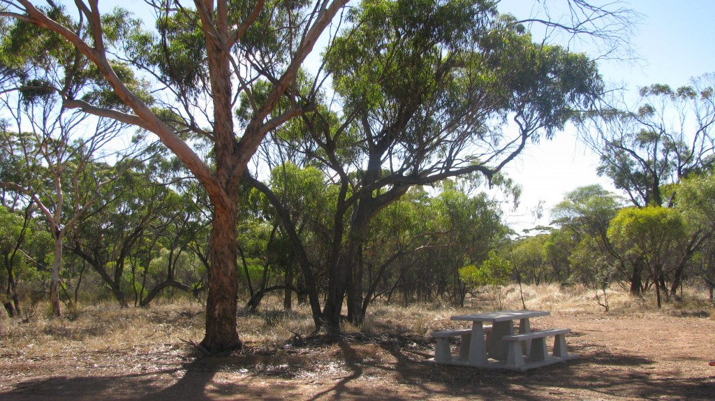 Konnongorring Picnic Area, Goomalling Western Australia