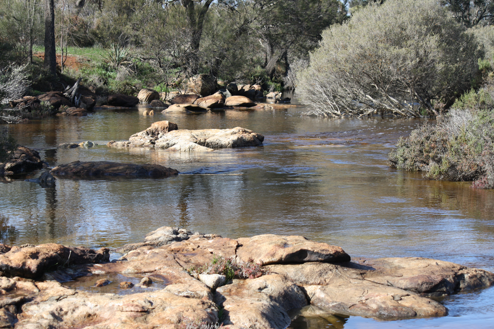 Mortlock River in Goomalling, Western Australia