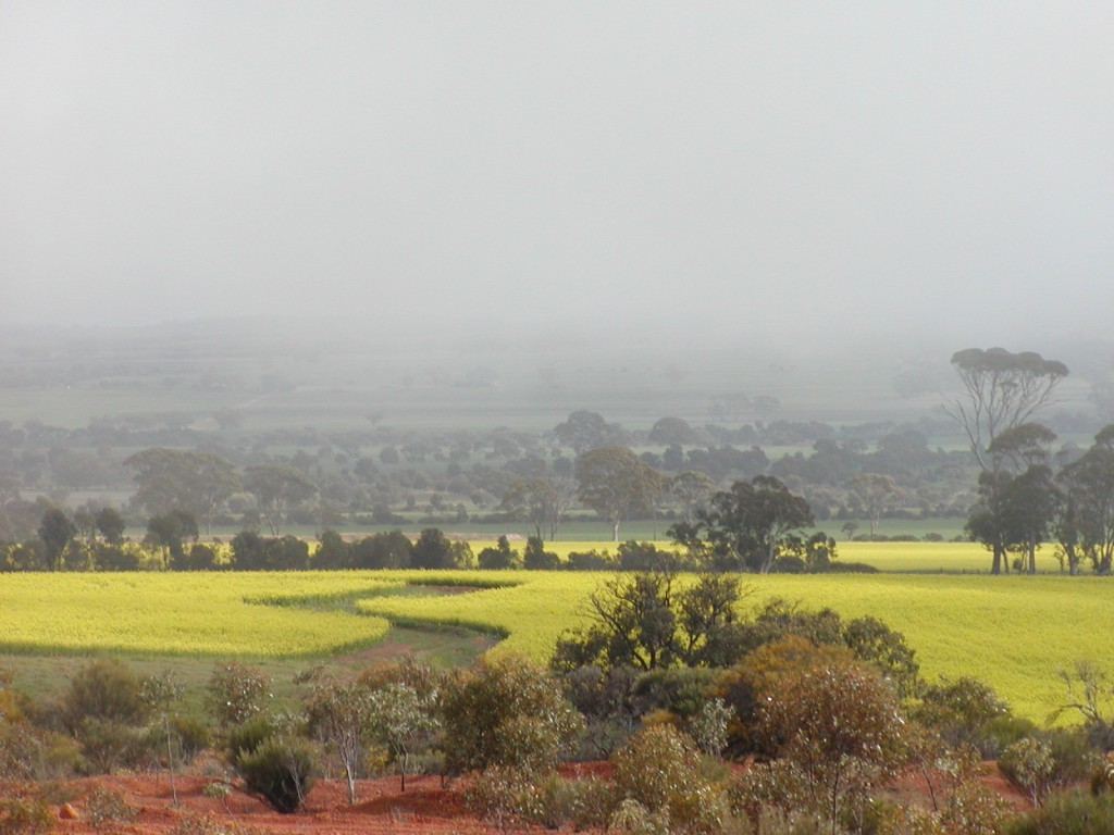 A view from the Gabby Quoi Quoi lookout, Goomalling, Western Australia