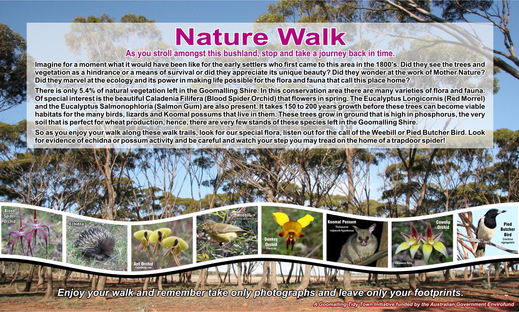Nature Walk information sign at Salmon Gum Way, Goomalling WA